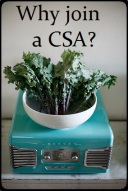 Why Join a CSA button